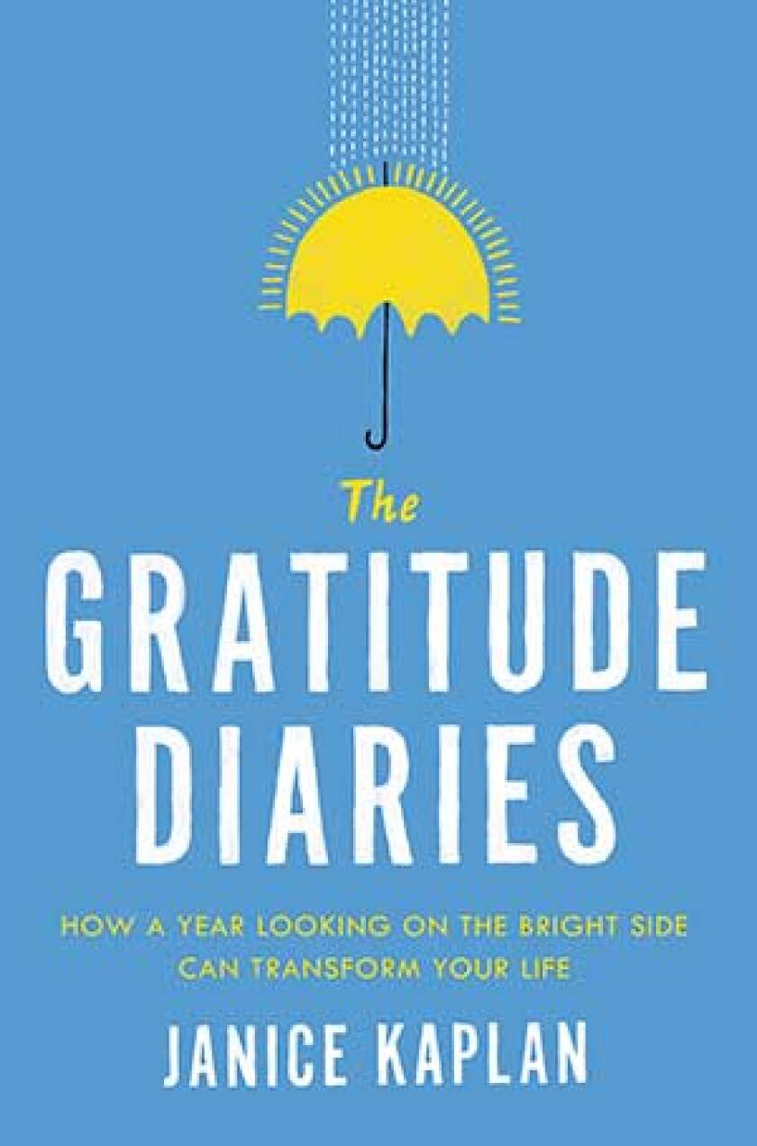 The Gratitude Diaries Book Jacket
