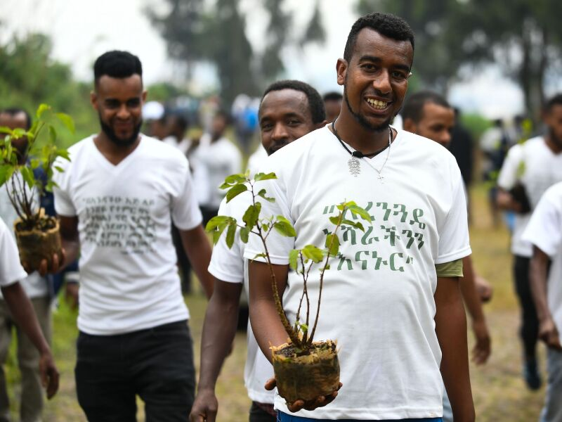 Young ethiopians take part in a national tree-planting drive in the capital Addis Ababa